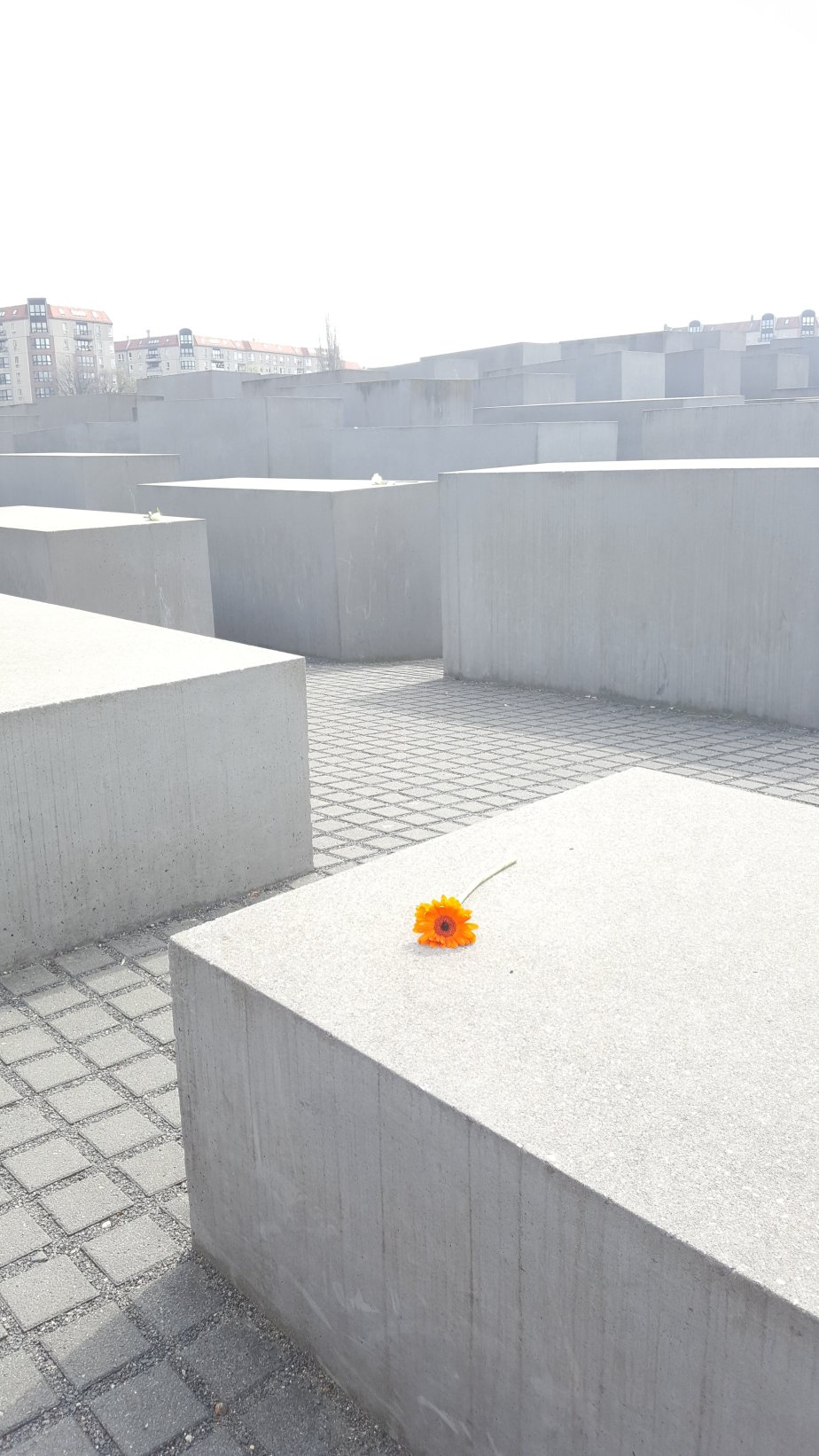 It's easy to get literally and figuratively lost in within the concrete blocks